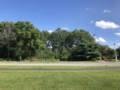 Kalamazoo County Residential Lots & Land For Sale: 6325 Texas Drive