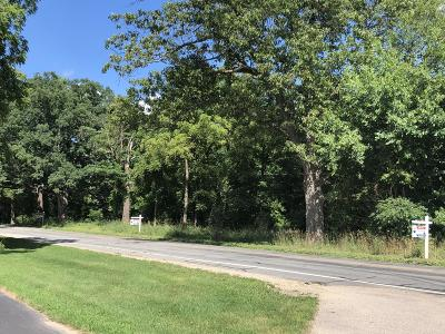 Kalamazoo County Residential Lots & Land For Sale: 6295 Texas Drive