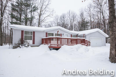 Newaygo County Single Family Home For Sale: 12281 S Rich Avenue