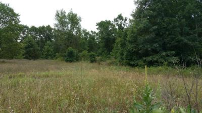 Newaygo County Residential Lots & Land For Sale: Lot B Croton Dr