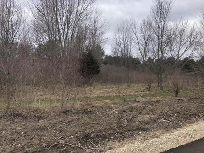 Hudsonville Residential Lots & Land For Sale: Parcel A Bauer Road