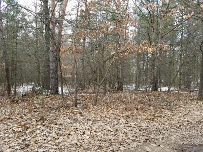 Newaygo County Residential Lots & Land For Sale: Parcel 1 Cottonwood Avenue