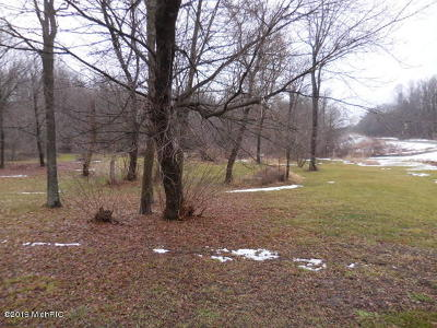 Kalamazoo County Residential Lots & Land For Sale: 9092 N Riverview Drive