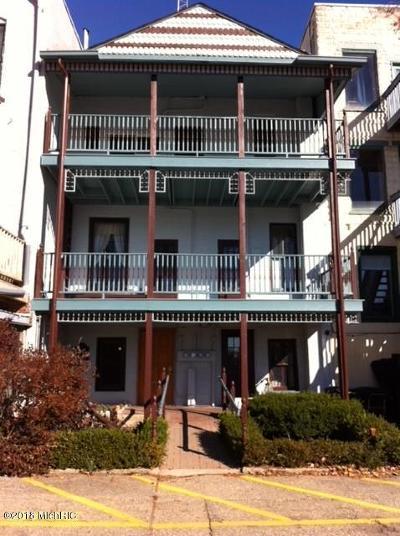 Allegan MI Condo/Townhouse For Sale: $220,000