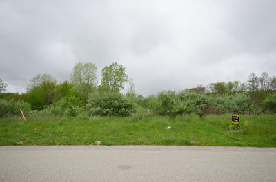 Grand Rapids Residential Lots & Land For Sale: 509 Ivy Grove N