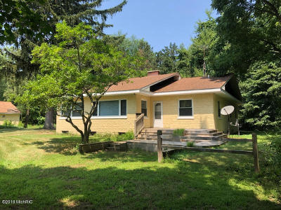 South Haven Single Family Home For Sale: 65098 16th Avenue