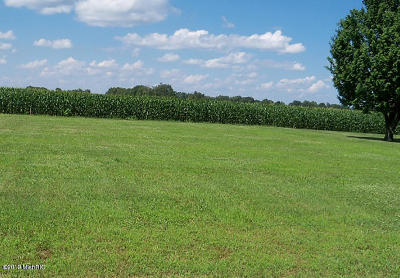 Allegan County, Barry County, Clinton County, Eaton County, Gratiot County, Ingham County, Ionia County, Isabella County, Kent County, Mecosta County, Montcalm County, Muskegon County, Newaygo County, Oceana County, Ottawa County Residential Lots & Land For Sale: V/L 116th Avenue