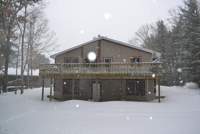 Newaygo County Single Family Home For Sale: 2972 S Spruce