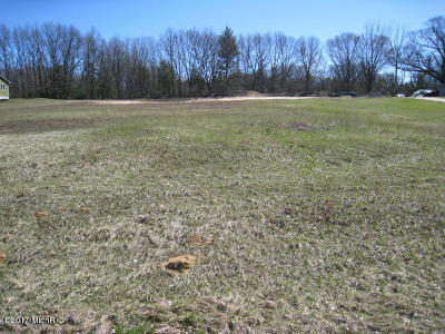 Newaygo County Residential Lots & Land For Sale: 9430 Mason Drive