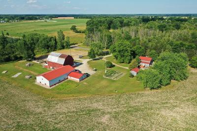 Montcalm County Single Family Home For Sale: 550 Waldron Road S