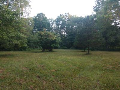 Clinton County, Gratiot County, Isabella County, Kent County, Mecosta County, Montcalm County, Muskegon County, Newaygo County, Oceana County, Ottawa County, Ionia County, Ingham County, Eaton County, Barry County, Allegan County Residential Lots & Land For Sale: 0059 Waldron