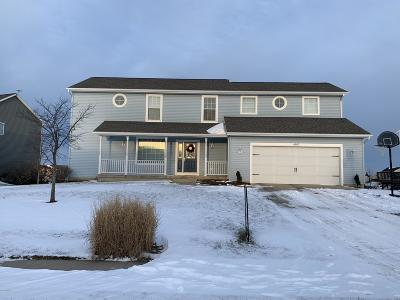 Hudsonville Single Family Home For Sale: 4107 Friesian Drive