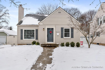 Grand Rapids Single Family Home For Sale: 1153 Kenesaw Drive SE