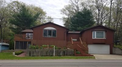 Newaygo Single Family Home For Sale: 8708 S Spruce Avenue