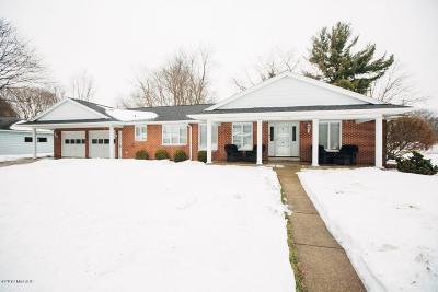 Kalamazoo Single Family Home For Sale: 3210 Olney Road