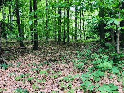 Benzie County, Charlevoix County, Clare County, Emmet County, Grand Traverse County, Kalkaska County, Lake County, Leelanau County, Manistee County, Mason County, Missaukee County, Osceola County, Roscommon County, Wexford County Residential Lots & Land For Sale: 6825 Hermitage Avenue