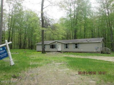 Newaygo County Single Family Home For Sale: 6438 E 16th Street