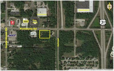 Clinton County, Gratiot County, Isabella County, Kent County, Mecosta County, Montcalm County, Muskegon County, Newaygo County, Oceana County, Ottawa County, Ionia County, Ingham County, Eaton County, Barry County, Allegan County Residential Lots & Land For Sale: 1161 E Pontaluna Road