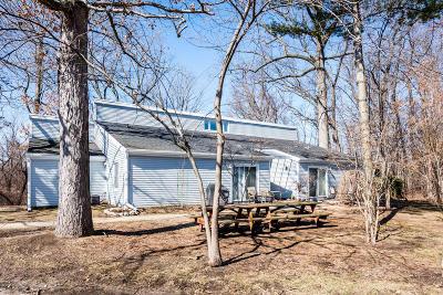 New Buffalo Condo/Townhouse For Sale: 1000 W. Buffalo #4A