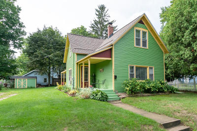 South Haven Single Family Home For Sale: 742 Green Street