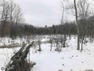 Manistee County Residential Lots & Land For Sale: 4854 Swihart Road