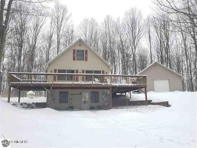 Benzie County, Charlevoix County, Clare County, Emmet County, Grand Traverse County, Kalkaska County, Lake County, Leelanau County, Manistee County, Mason County, Missaukee County, Osceola County, Roscommon County, Wexford County Single Family Home For Sale: 7357 W 38 Road