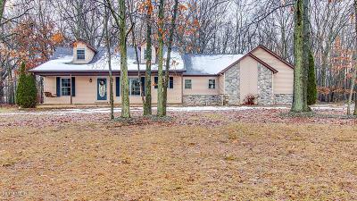 Battle Creek Single Family Home For Sale: 8291 Robins Lane