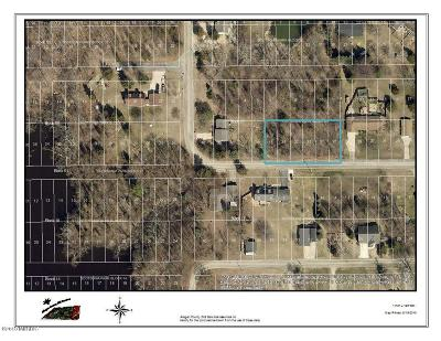 Clinton County, Gratiot County, Isabella County, Kent County, Mecosta County, Montcalm County, Muskegon County, Newaygo County, Oceana County, Ottawa County, Ionia County, Ingham County, Eaton County, Barry County, Allegan County Residential Lots & Land For Sale: V/L Lauder Avenue