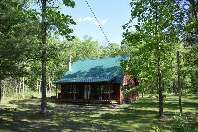 Benzie County, Charlevoix County, Clare County, Emmet County, Grand Traverse County, Kalkaska County, Lake County, Leelanau County, Manistee County, Mason County, Missaukee County, Osceola County, Roscommon County, Wexford County Single Family Home For Sale: 22775 Hoxeyville Road
