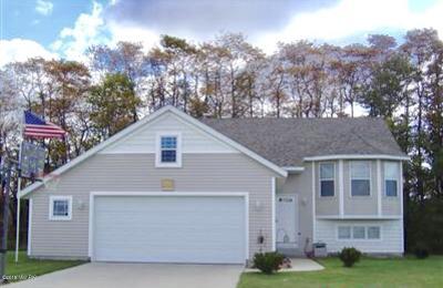 Zeeland Single Family Home For Sale: 2016 Bennigan Lane