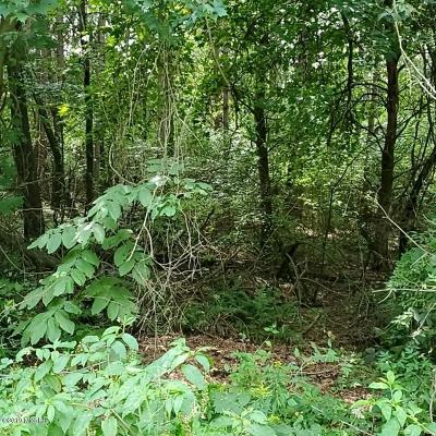 Residential Lots & Land For Sale: 13034 Spruce Ridge Road