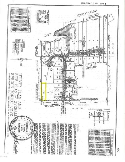 Clinton County, Gratiot County, Isabella County, Kent County, Mecosta County, Montcalm County, Muskegon County, Newaygo County, Oceana County, Ottawa County, Ionia County, Ingham County, Eaton County, Barry County, Allegan County Residential Lots & Land For Sale: 17171 Sorensen Avenue NE