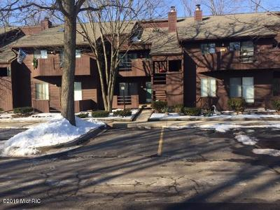 Ingham County Condo/Townhouse For Sale: 205 E Jolly Road #5