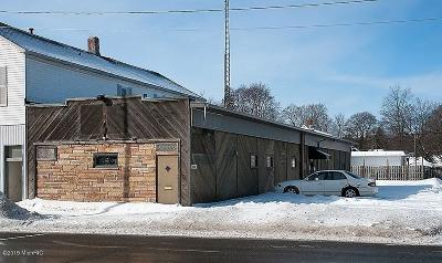 Big Rapids Commercial For Sale: 605 N State Street