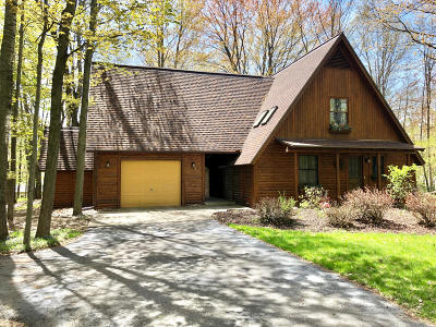Mecosta County Single Family Home For Sale: 11139 Birwood Drive