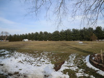 Branch County Residential Lots & Land For Sale: N Union City Road