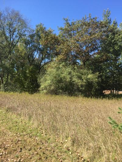 Big Rapids Residential Lots & Land For Sale: 510 S Third Avenue