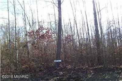 Howard City Residential Lots & Land For Sale: 20605 Blue Fox Way #37