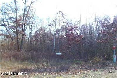 Howard City Residential Lots & Land For Sale: 20555 Blue Fox Way #38
