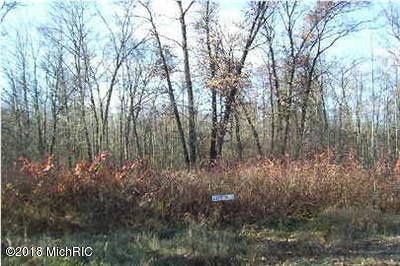 Howard City Residential Lots & Land For Sale: Unit 28 Barberry Lane #28