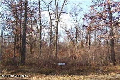 Howard City Residential Lots & Land For Sale: 10085 Barberry Lane #29