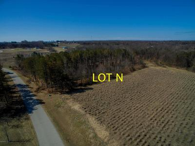 Residential Lots & Land For Sale: Lot N Meadow View Lane