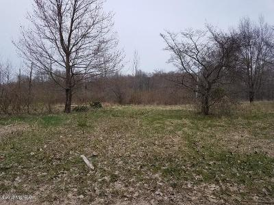 Cassopolis Residential Lots & Land For Sale: 00 Chain Lake Street