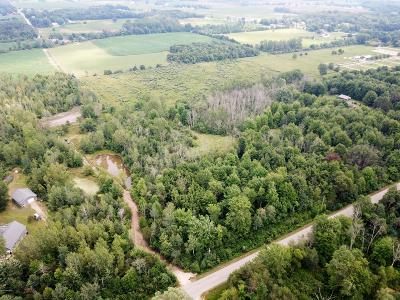 Holland, West Olive Residential Lots & Land For Sale: 4101 62nd Street