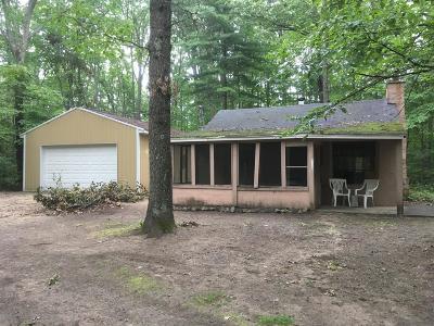 White Cloud Single Family Home For Sale: 2634 N Wisner Avenue