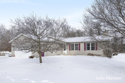 Ionia County Single Family Home For Sale: 9740 W Riverside Drive