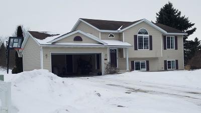 Single Family Home For Sale: 664 Sunbrook Street SE