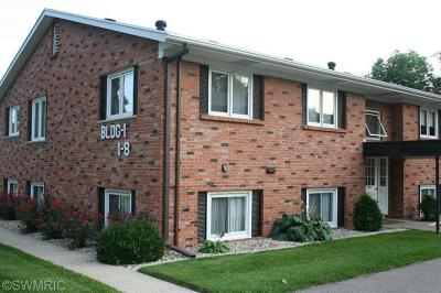 Holland, West Olive, Zeeland Condo/Townhouse For Sale: 230 S State Street #001