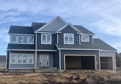 Schoolcraft Single Family Home For Sale: 6016 Sunshine Avenue