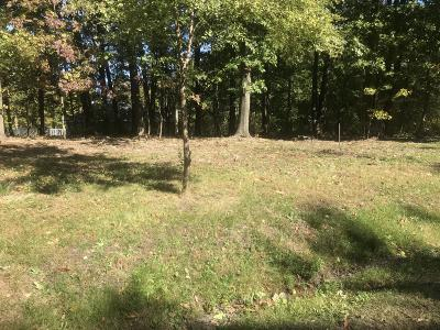 New Buffalo Residential Lots & Land For Sale: 17664 Penny Lane